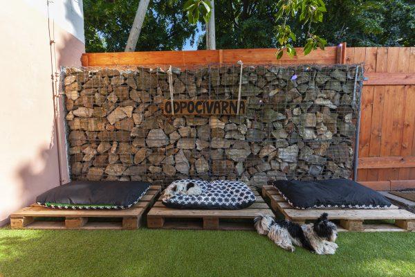 psi raj odpočívárna